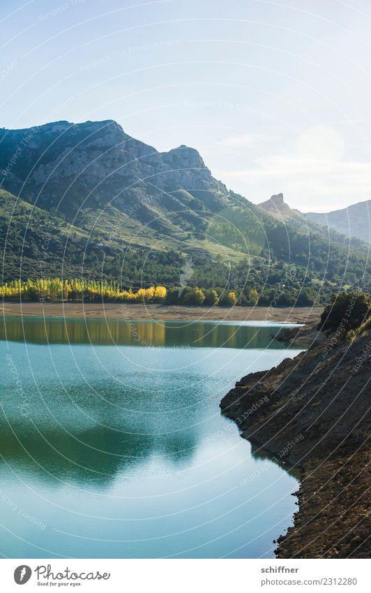 Überraschung | das ist Malle Umwelt Natur Landschaft Pflanze Erde Wasser Himmel Sonnenlicht Herbst Schönes Wetter Baum Gras Sträucher Wiese Wald Hügel