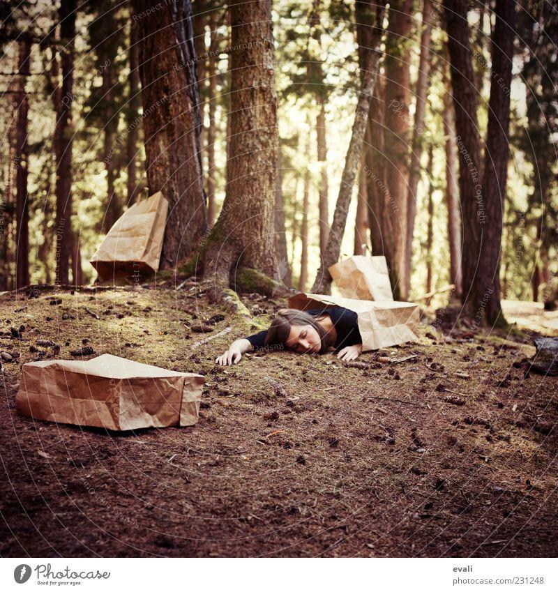 Paper bag dreams Frau Mensch Jugendliche grün Baum Erwachsene Wald gelb feminin träumen braun schlafen 18-30 Jahre skurril Baumstamm Junge Frau