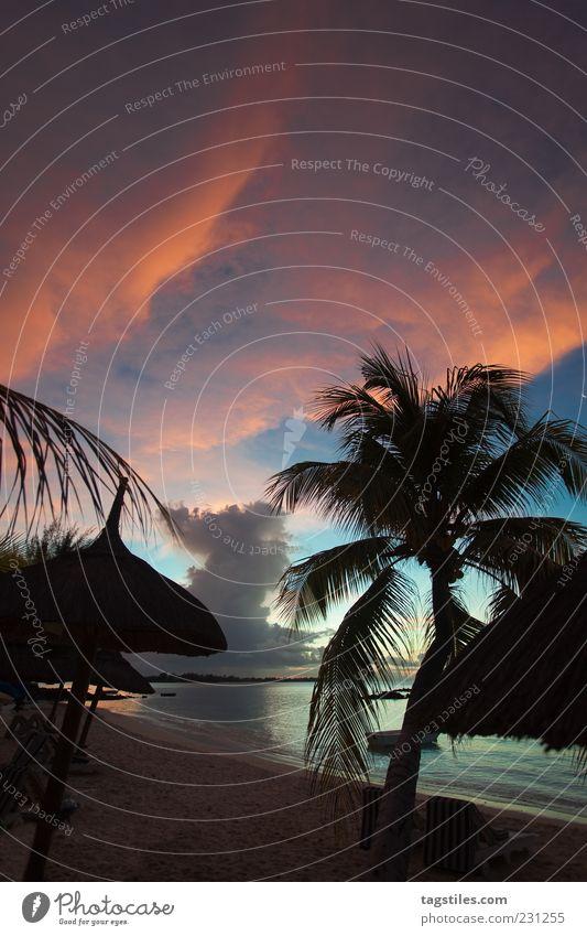 WOLKENGEMÄLDE Natur Meer Strand Wolken Farbe Erholung Reisefotografie Afrika Bucht Sonnenschirm Palme bizarr Brandung Paradies himmlisch Palmenwedel
