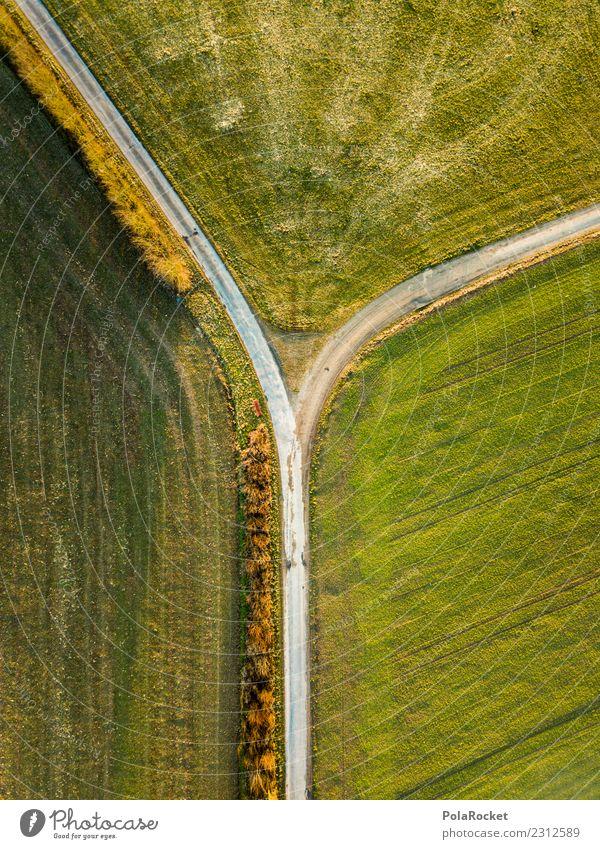 #S# Finde deinen Weg ! Umwelt Natur laufen grün Feld Wege & Pfade abbiegen Abendsonne Entscheidung Umweg wandern oben Drone Religion & Glaube Landwirtschaft