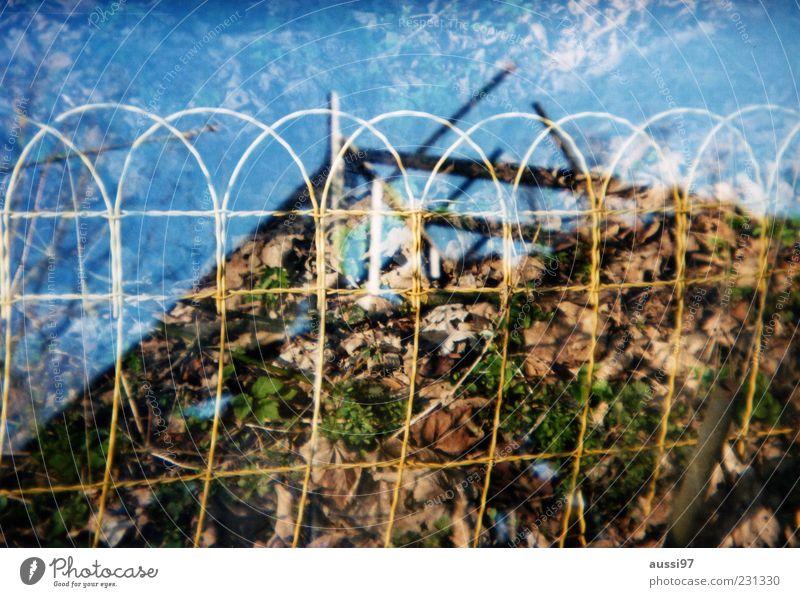 After the nuke Pflanze verfallen Zaun analog Doppelbelichtung Zerstörung Draht Demontage schemenhaft Dachgebälk eingeengt
