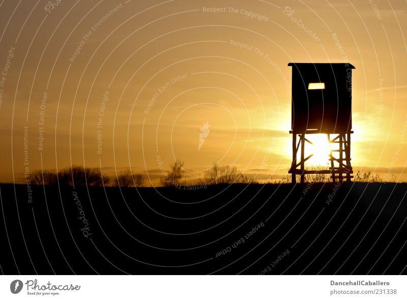 Hochsitz in der Dämmerung Natur Landschaft Himmel Wolken Horizont Sonne Sonnenlicht Sträucher ruhig friedlich Holz Farbfoto Außenaufnahme Menschenleer Abend