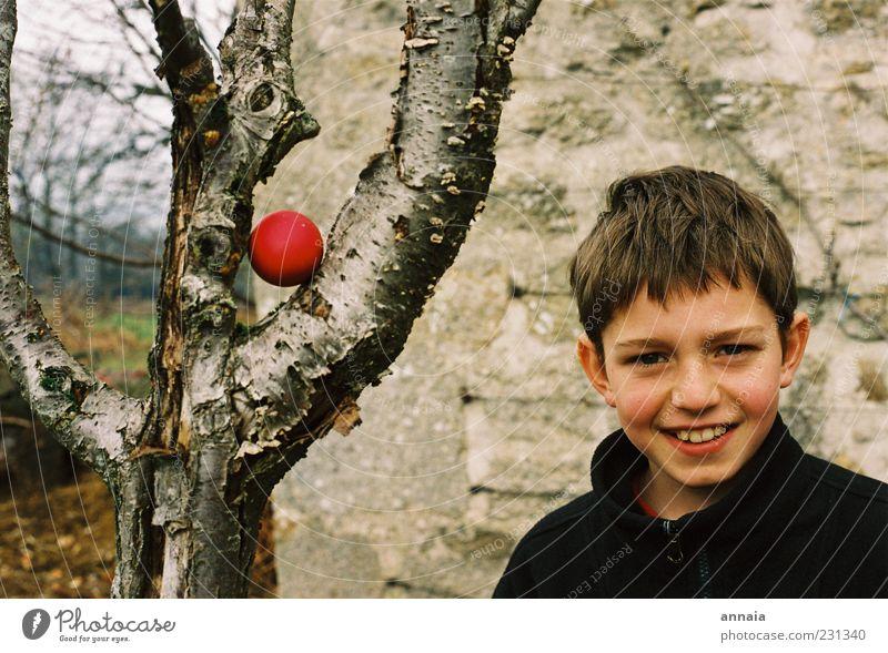 Überraschungsei Kind Baum rot Leben Junge Kindheit Fröhlichkeit außergewöhnlich Ostern Lächeln Lebensfreude Überraschung 8-13 Jahre Vorfreude finden Mensch