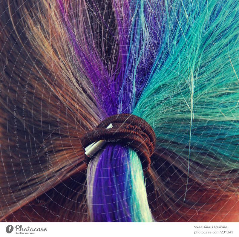 BUNT! Mensch Jugendliche blau Haare & Frisuren wild nass einzigartig Junge Frau trashig trendy Punk Zopf Haarsträhne Haarschopf Hinterkopf Haargummi