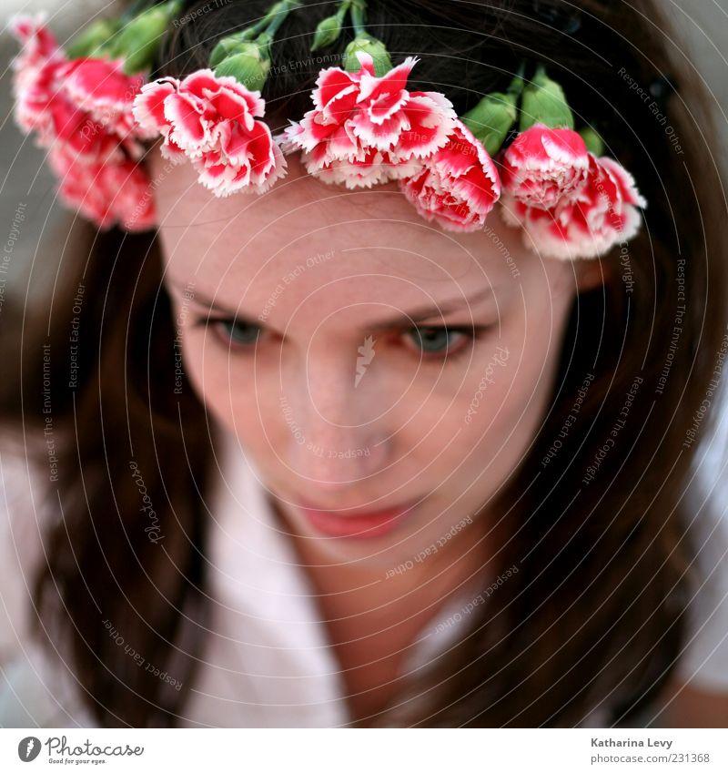 Blumen pflücken für Fortgeschrittene Frau Mensch Jugendliche schön rot Gesicht feminin Kopf Blüte Haare & Frisuren Erwachsene Haut rosa natürlich Wellness
