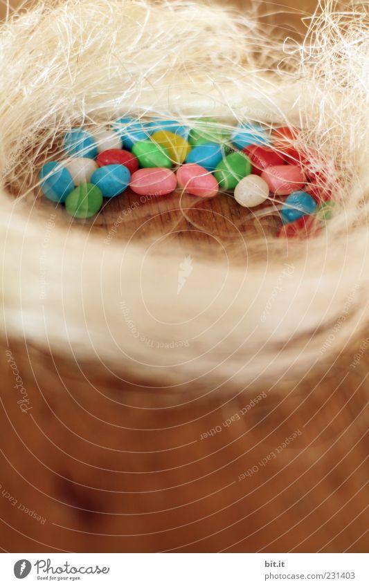 frohe Östern schön Holz Glück Gesundheit Feste & Feiern liegen Dekoration & Verzierung Fröhlichkeit Ernährung Lebensfreude Zeichen Ostern Krankheit Süßwaren Tradition Feiertag