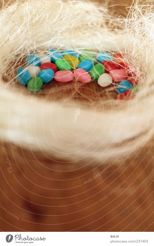 frohe Östern Süßwaren Ernährung Gesundheit Krankheit Feste & Feiern Ostern Holz Zeichen liegen Fröhlichkeit Glück Lebensfreude Osterei Osternest Zuckerperlen