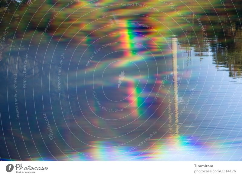 Ein Kessel Buntes | XXL Natur blau Wasser Wald Umwelt Frühling Gefühle See Stimmung Wasseroberfläche Spektralfarbe