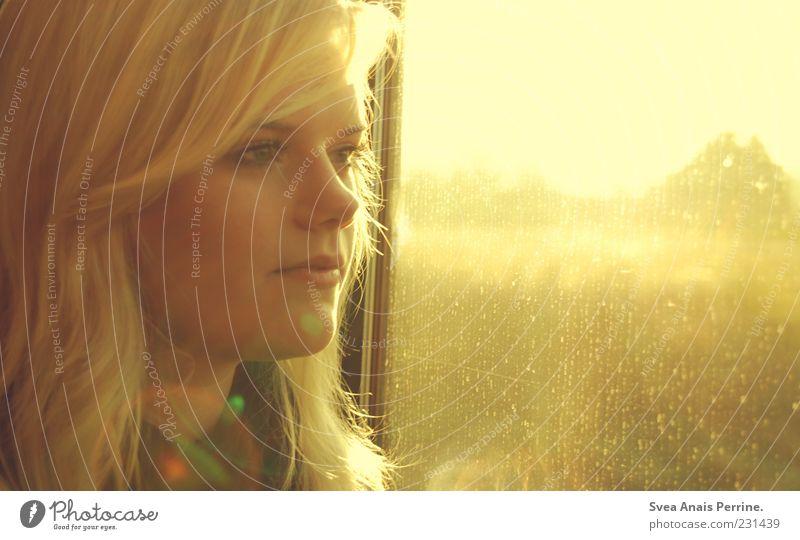 train into the sun. Lifestyle elegant feminin Gesicht 1 Mensch 18-30 Jahre Jugendliche Erwachsene Haare & Frisuren blond Blick schön Gefühle Stimmung Fenster