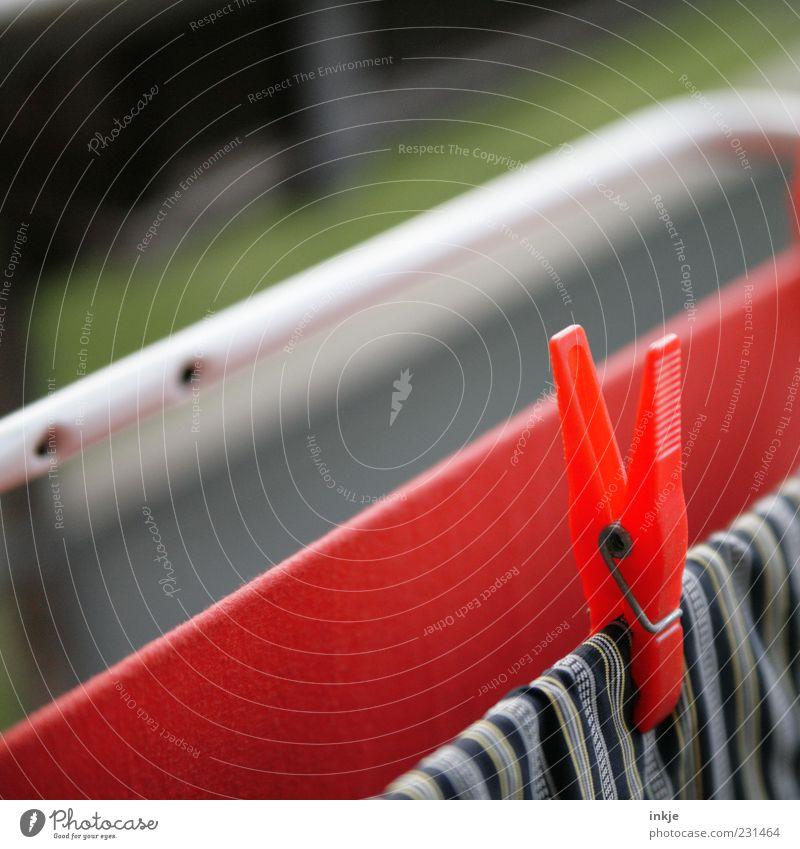 same procedure as every second day, James rot Ordnung Kunststoff festhalten Duft hängen Wäsche Halt trocknen aufhängen Alltagsfotografie Wäscheklammern Waschtag