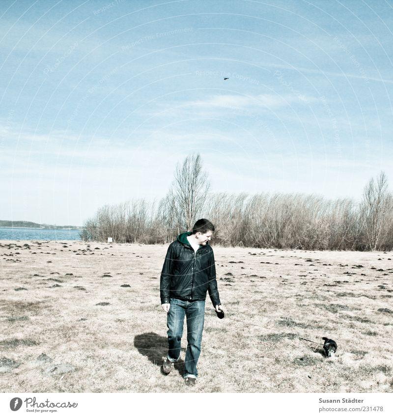 Seniorenbetreuung Jugendliche Hund Erwachsene Ferne Wiese See laufen maskulin Sträucher Spaziergang Jeanshose 18-30 Jahre Schönes Wetter langsam