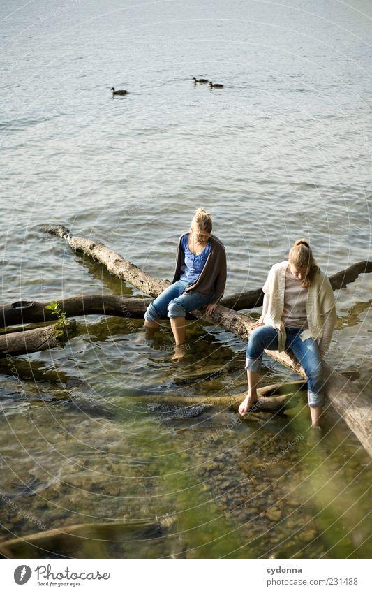 Am Wasser Mensch Natur Jugendliche Wasser Ferien & Urlaub & Reisen Sommer ruhig Erwachsene Ferne Erholung Umwelt Leben sprechen Freiheit See träumen