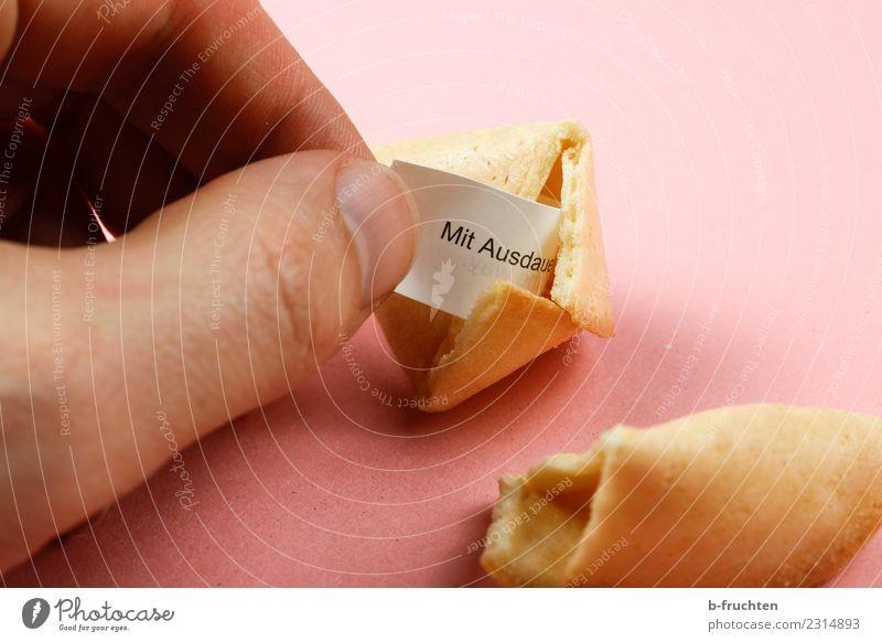 Glückskeks Süßwaren Mann Erwachsene Hand Finger entdecken festhalten Blick rosa Hoffnung Glaube Freude geheimnisvoll aufmachen Redewendung Weisheit Keks