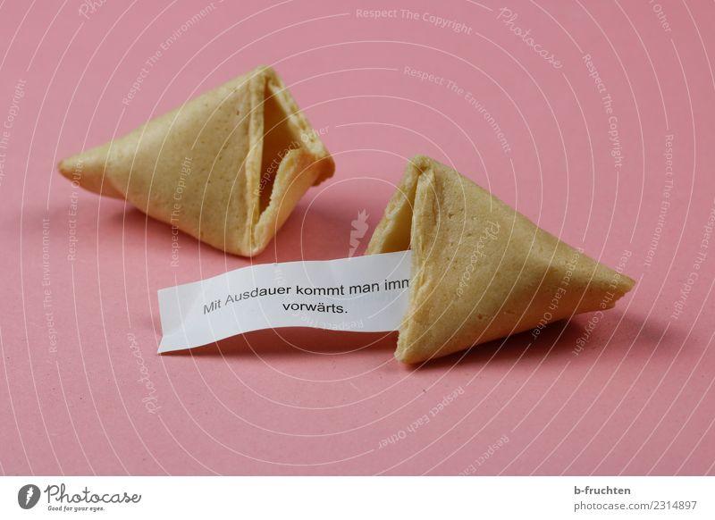 Mit Ausdauer kommt man immer vorwärts. Süßwaren Schriftzeichen rosa Kraft Willensstärke Glückskeks Keks aufmachen Redewendung Papier Spruchband Schleife