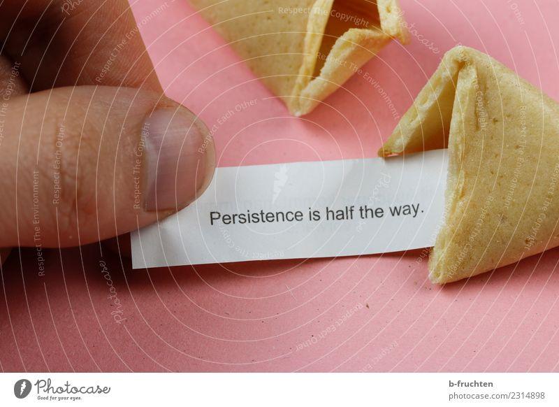 Persistence is half the way Süßwaren Mann Erwachsene Finger festhalten lesen rosa Glück Neugier Erwartung Glaube Religion & Glaube Ausdauer Weisheit Redewendung