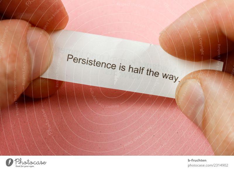 persistence is half the way Mann Erwachsene Finger Schriftzeichen Denken festhalten lesen Blick rosa Glück Optimismus Erfolg Kraft Willensstärke Tatkraft