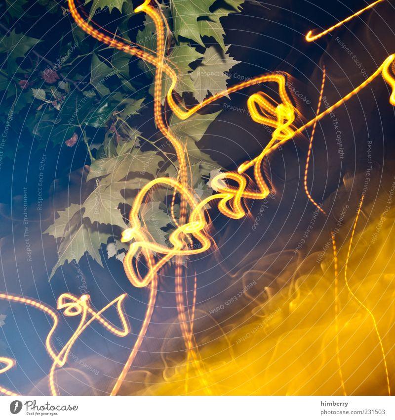 ökostrom Natur Baum Pflanze Blatt gelb Umwelt Kunst Design Klima außergewöhnlich Kreativität Kontakt chaotisch bizarr Kontrolle Klimawandel