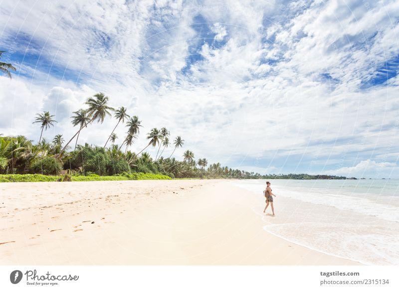 Balapitiya, Sri Lanka - Frau am Strand von Balapitiya Asien schön niedlich verträumt himmlisch Idylle erleuchten Landschaft Natur Meer Palme friedlich