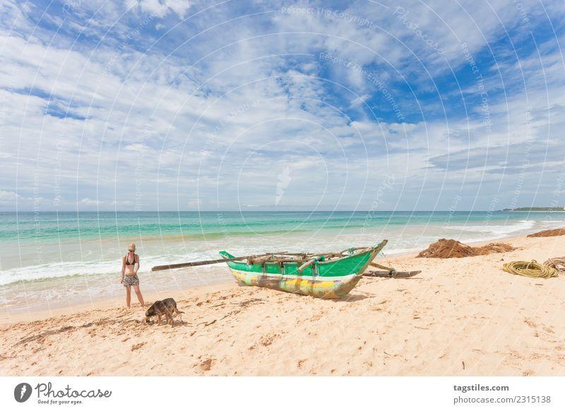 Frau Natur Ferien & Urlaub & Reisen Hund Pflanze Sommer schön Wasser Landschaft Meer Erholung Strand natürlich Küste Tourismus Sand