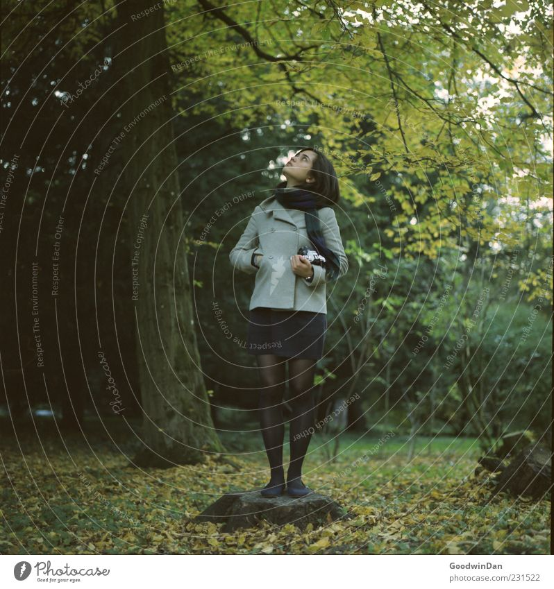 still. Mensch feminin Junge Frau Jugendliche Erwachsene Partner 1 Umwelt Natur Herbst Wetter Schönes Wetter Park Bekleidung Mantel Strumpfhose Haare & Frisuren