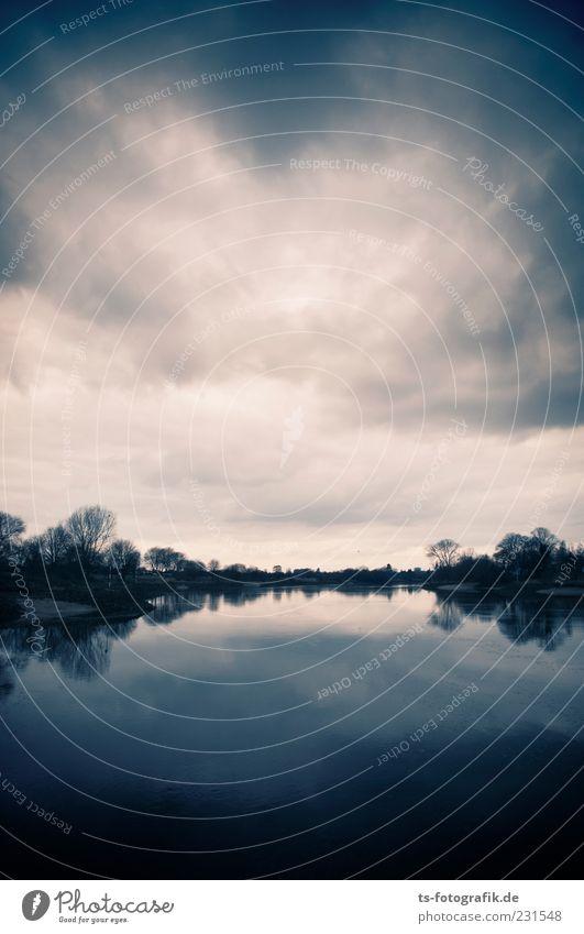 Igor, wo ist das Boot? Umwelt Natur Landschaft Urelemente Wasser Himmel Wolken Gewitterwolken schlechtes Wetter Sturm Baum Küste Seeufer Flussufer dunkel blau