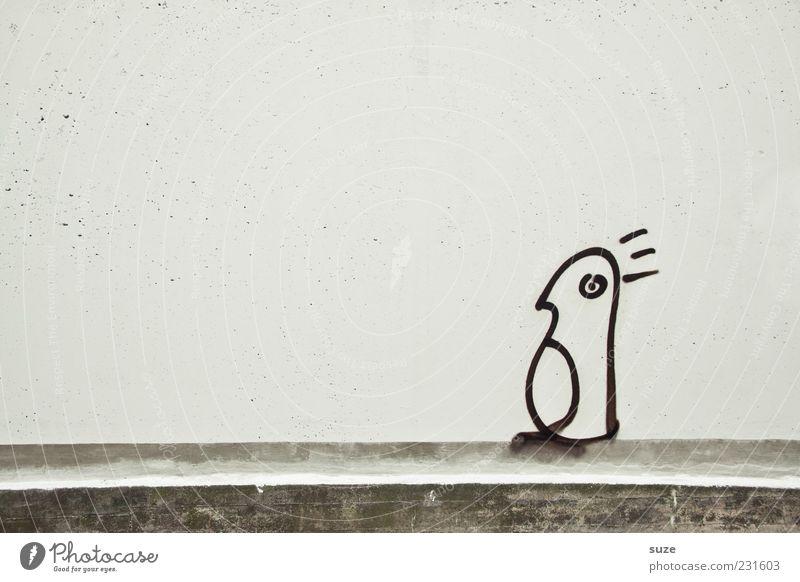 Wer bin ich ... Kunst Mauer Wand Fassade Tier Vogel Pinguin 1 authentisch einfach einzigartig lustig trist grau weiß Graffiti Comic Zeichnung Schmiererei