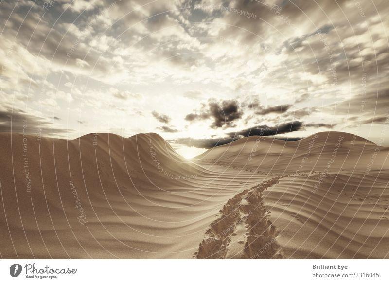 Wüstenspuren Himmel Natur Ferien & Urlaub & Reisen Sommer Sonne gelb Umwelt Tourismus Sand wandern frei Abenteuer Beginn laufen Unendlichkeit