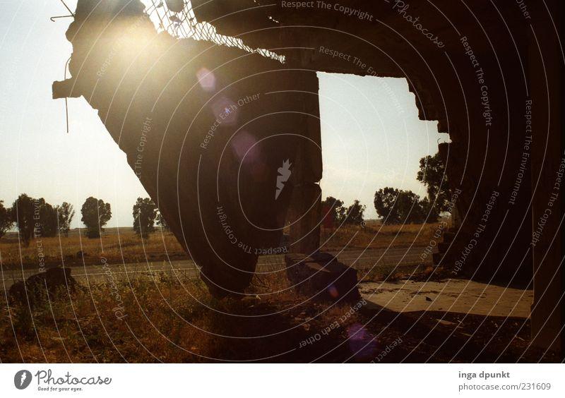 Einstürzende Altbauten Wand Landschaft Gras Wege & Pfade Stein Mauer Angst Beton gefährlich verfallen Schönes Wetter Gewalt Krieg Verfall Ruine chaotisch