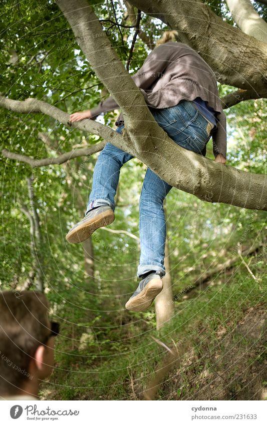 Platz in den Bäumen Mensch Natur Jugendliche Baum Sommer Erwachsene Wald Umwelt Leben Freiheit Bewegung träumen Paar Freundschaft Freizeit & Hobby sitzen