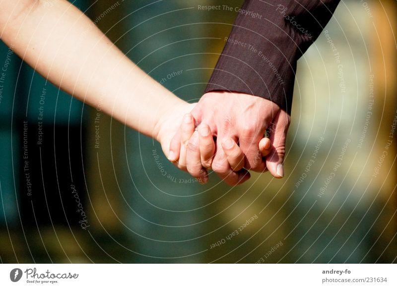 Freundschaft oder Liebe? Mensch Frau Mann Hand Erwachsene Gefühle Glück Zusammensein Zukunft Finger berühren festhalten Freundlichkeit Vertrauen