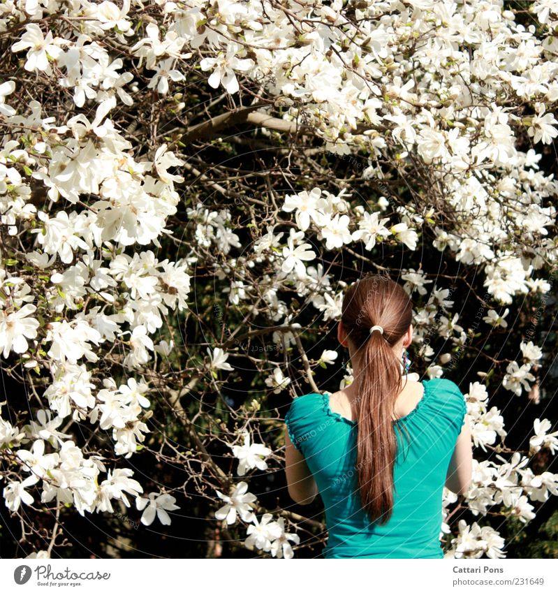 weiß & blau Mensch feminin Junge Frau Jugendliche Erwachsene 1 Umwelt Natur Pflanze Baum Blume Haare & Frisuren brünett langhaarig Zopf wählen berühren schön