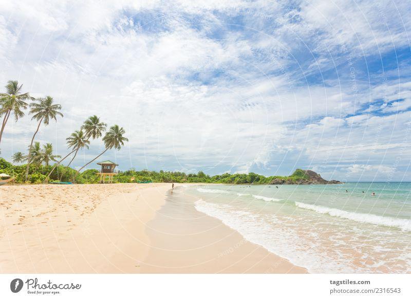 Sri Lanka - Weitsicht am Strand von Balapitiya Asien Bucht Schalter Küste verträumt Exklusivität Exquisit fein Fußspur erleuchten Landschaft Blatt Natur Meer