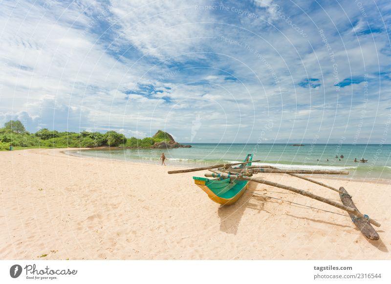 Frau Himmel Natur Ferien & Urlaub & Reisen Pflanze Sommer Wasser Landschaft Meer Erholung Strand natürlich Küste Tourismus Sand Idylle