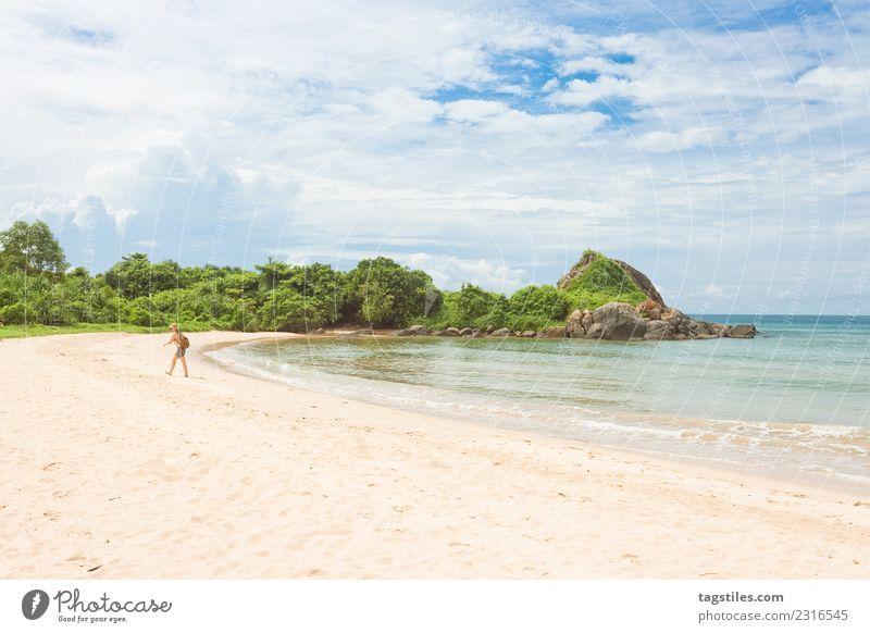 Frau Himmel Natur Ferien & Urlaub & Reisen Pflanze Sommer Landschaft Meer Blatt ruhig Strand natürlich Küste Tourismus Idylle Sträucher