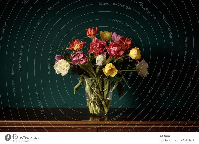 Tulpenstrauß Dekoration & Verzierung Blumenstrauß Pflanze alt Blühend Duft verblüht retro schön mehrfarbig grün Frühlingsgefühle elegant Farbe Kunst Liebe