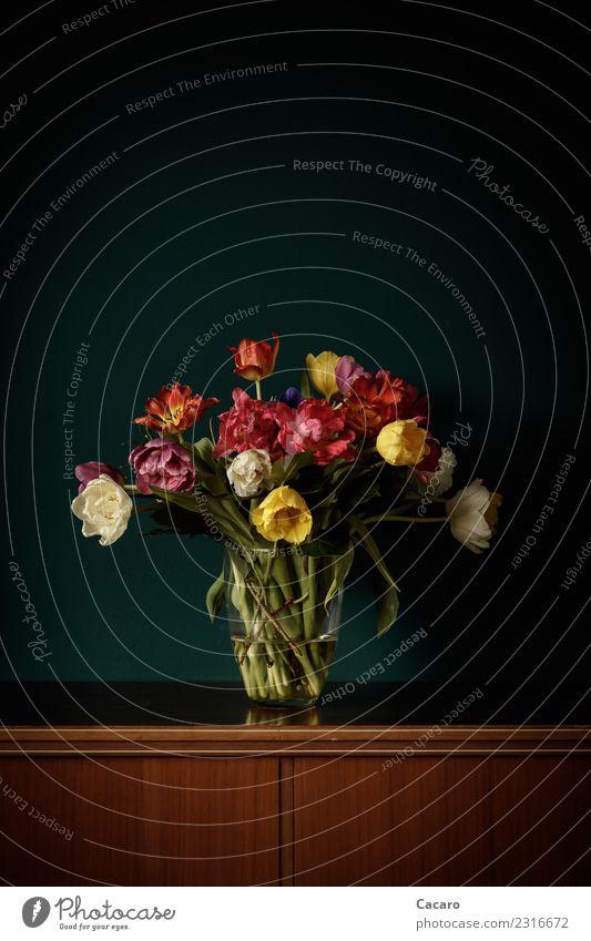 Tulpenstrauß Stil Dekoration & Verzierung Valentinstag Muttertag Geburtstag Pflanze Blume Blüte Blumenstrauß Holz ästhetisch retro Wärme braun mehrfarbig grün