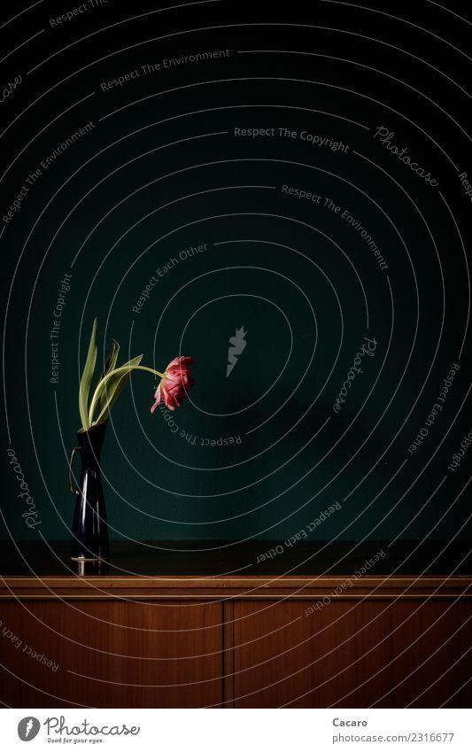 ein Tulpenleben 4 Wohnung einrichten Innenarchitektur Dekoration & Verzierung Valentinstag Muttertag Geburtstag Pflanze Blume Blüte Vase Schrank Kommode Holz