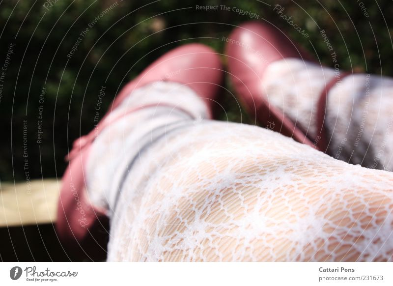 Sweet Season schön Mensch feminin Mädchen Beine Fuß 1 Bekleidung Strumpfhose Schuhe Damenschuhe Ballerina hängen hocken sitzen Kitsch dünn grün rosa weiß