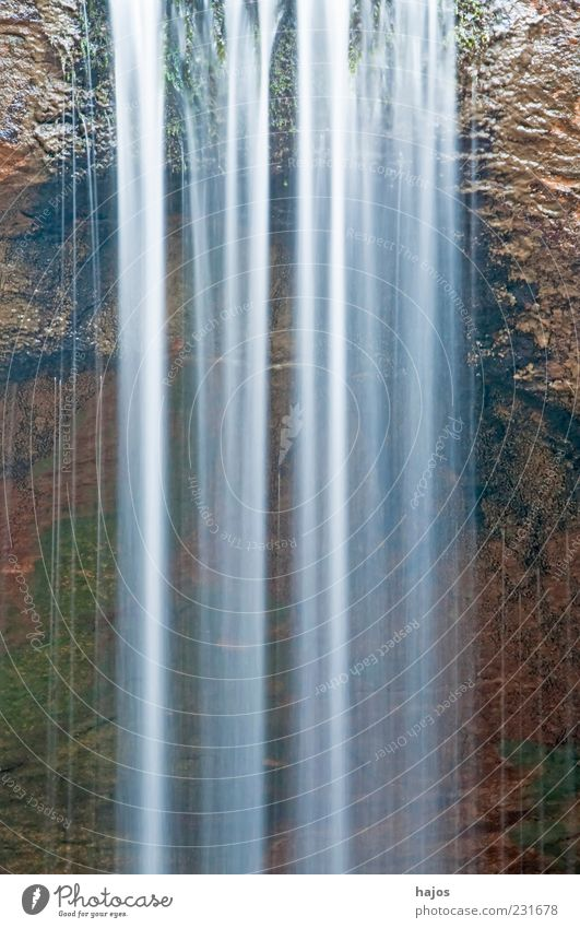 Wasserfall ästhetisch Bewegung Energie fließen schäumen Wildbach Sturzbach strömen Hintergrundbild Kraft Naturschutzgebiet rein deutlich Farbfoto Außenaufnahme