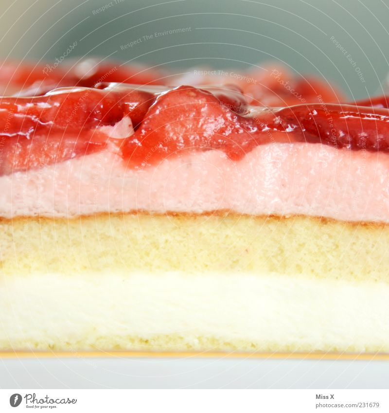 Kuchentag Ernährung Lebensmittel Frucht rosa frisch süß Teile u. Stücke Kuchen lecker saftig Torte Erdbeeren Dessert Sahne Geschmackssinn