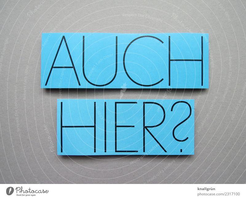 Auch hier? Fragen Neugier Kommunizieren Interesse Kommunikation Buchstaben Wort Satz Typographie Schriftzeichen Sprache Text Lateinisches Alphabet Letter
