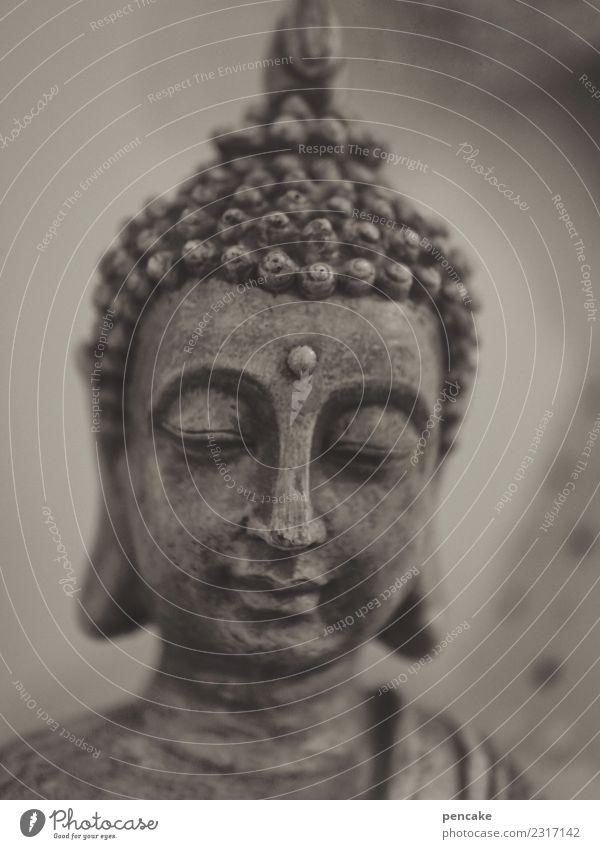verwandlung | gautama zu buddha ruhig Meditation Dekoration & Verzierung Skulptur Energie geheimnisvoll Gelassenheit Identität kompetent Konzentration Kultur
