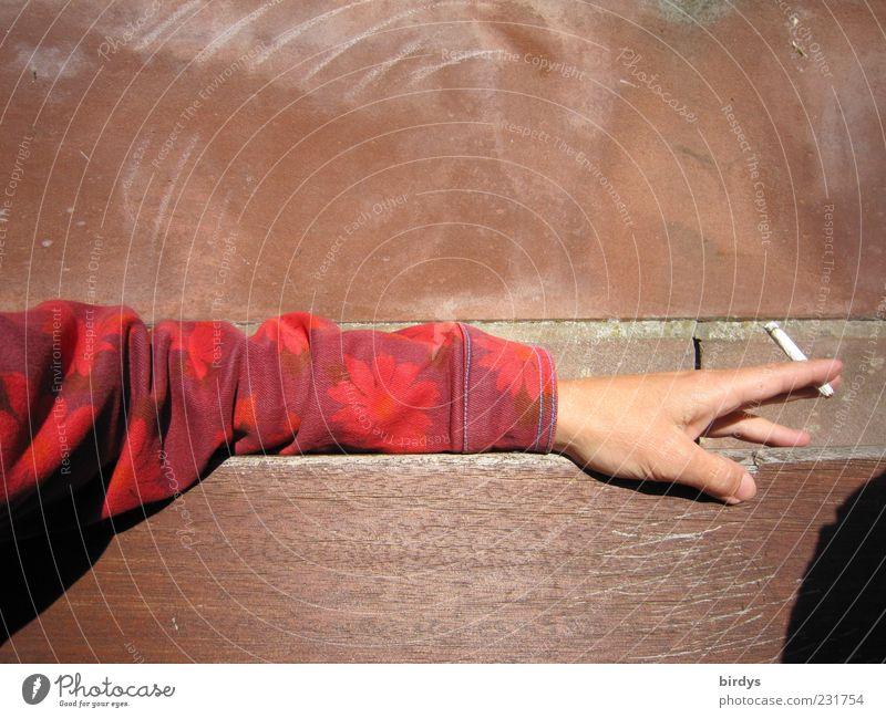 Sonne und Tabak genießen Mensch Hand rot Freude Erholung Leben braun Arme sitzen frei Finger authentisch Bank Rauchen festhalten Schönes Wetter