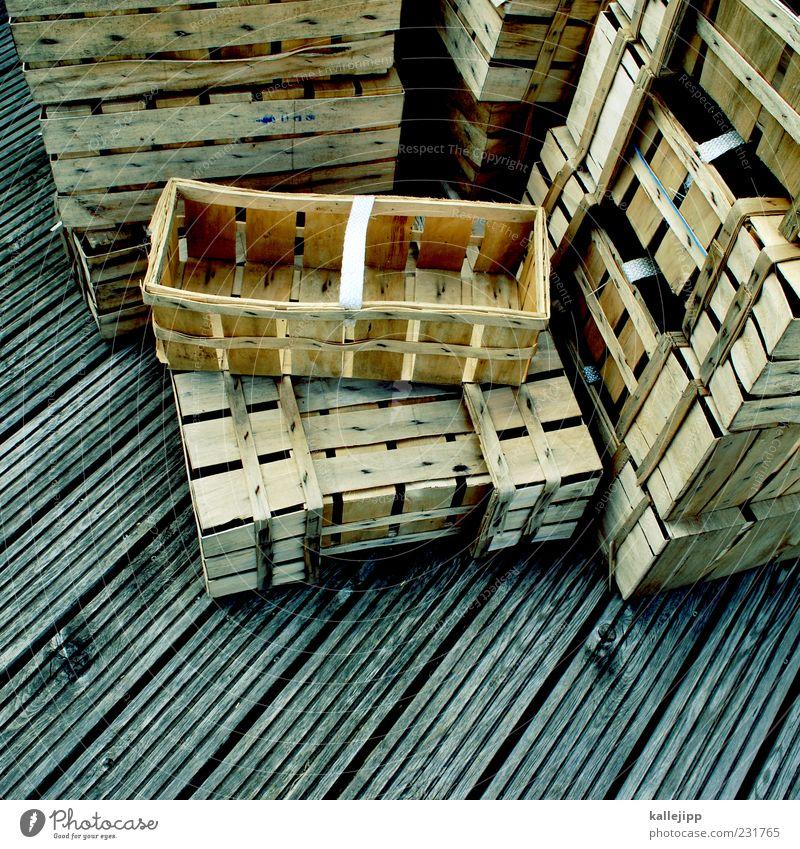 jäger und sammler Korb körbchen Ernte Holz Sammlung Farbfoto Außenaufnahme Menschenleer Licht Schatten Vogelperspektive Stapel viele