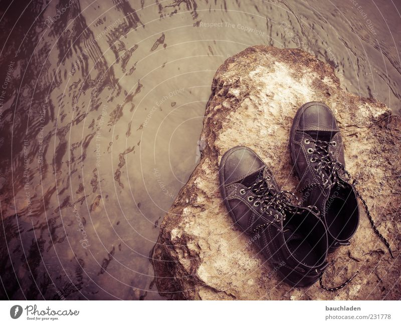 walk in my shoes! Wasser Schuhe Stein Menschenleer Textfreiraum links Starke Tiefenschärfe Vogelperspektive Schuhpaar braun