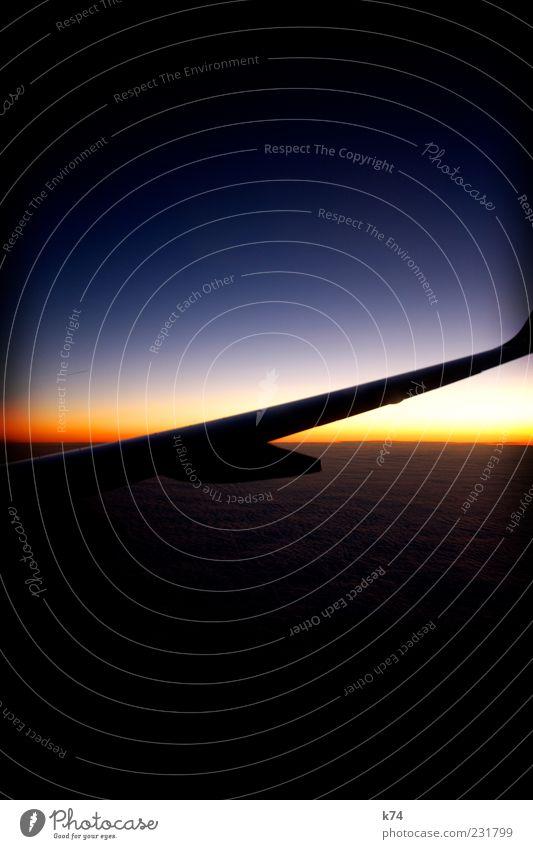 modern times Himmel blau Wolken gelb Luft träumen Horizont fliegen Flugzeug Luftverkehr leuchten Tragfläche Sonnenuntergang Gegenlicht im Flugzeug Flugzeugausblick