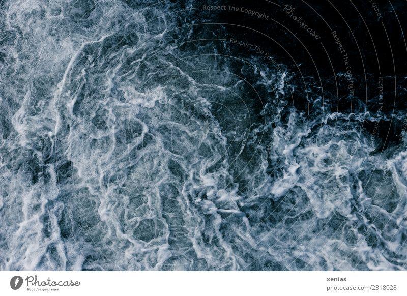 Wasserkraft Natur blau weiß Meer kalt See wild Wellen frisch Kraft Fluss maritim Gischt sprudelnd