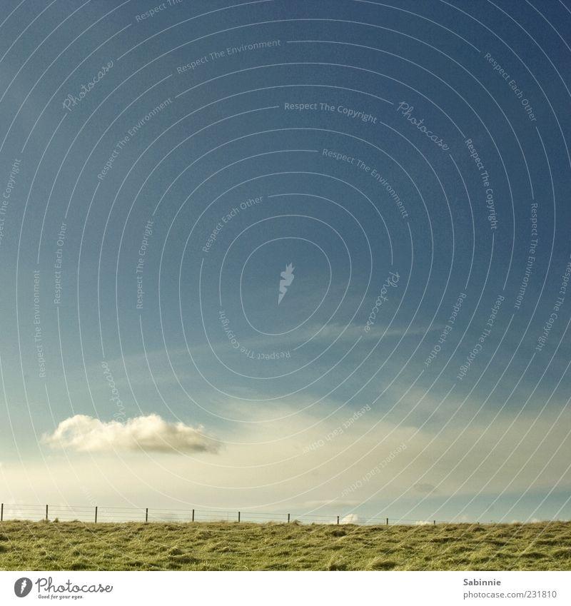 Wolkenreise Natur Landschaft Erde Himmel Wetter Schönes Wetter Gras Wiese Feld Hügel Küste Bullers of Buchan Schottland Zaun Holzpfahl Unendlichkeit