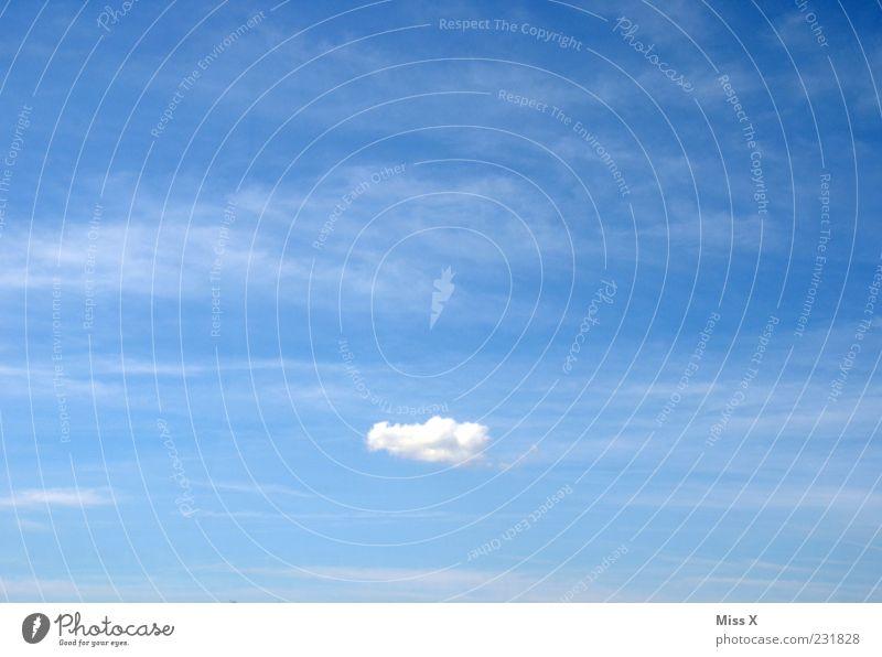 UWO Luft Himmel nur Himmel Wolken Klima Wetter Schönes Wetter fliegen Unendlichkeit Ferne Farbfoto Außenaufnahme Menschenleer Textfreiraum links