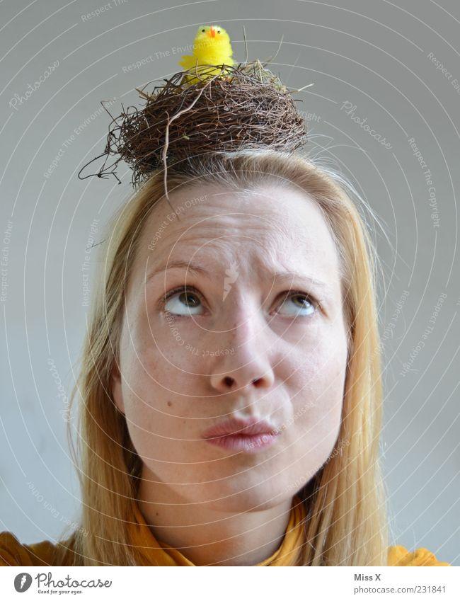 Miss X hat nen Piep Mensch feminin Frau Erwachsene Kopf 1 18-30 Jahre Jugendliche Tier Vogel Tierjunges lustig verrückt Nest Küken Osternest